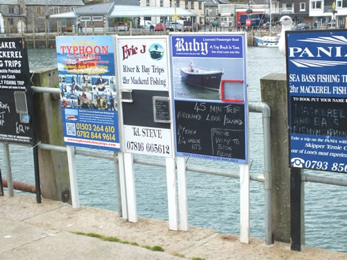 Boat trips run from the quay at Looe in season